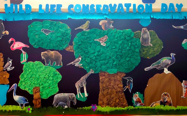 Wild Life Conservation Day