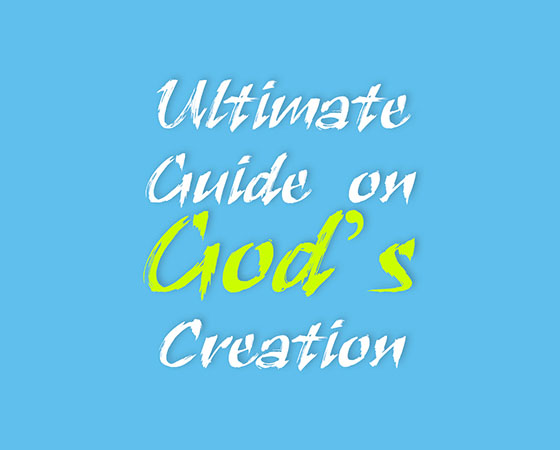 jujuschool-learning-aid--ultimate-guide-on-gods-creation